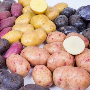 Seed Potatoes-25kg bags