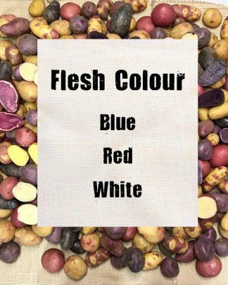 Flesh Colour